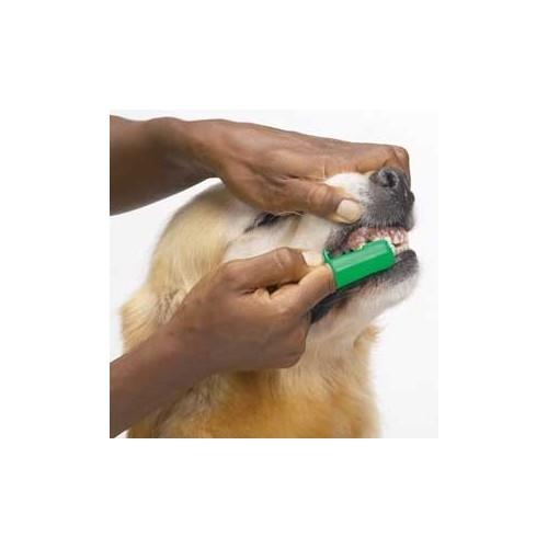 Dedo Escova de Dentes p/ Cão (par)